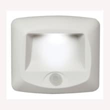 Motion Sensor LED Multi-Purpose Light