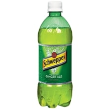 Ginger Ale Soda 20 oz Bottle